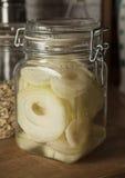 Σιρόπι κρεμμυδιών Στοκ Εικόνα
