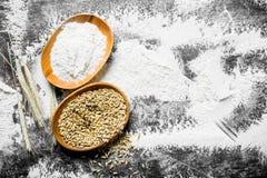 Σιτάρι αλευριού και σίτου στα κύπελλα με spikelets στοκ εικόνα με δικαίωμα ελεύθερης χρήσης