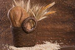 σιτάρι δημητριακών ψωμιού κ& Στοκ Φωτογραφία