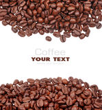 σιτάρι καφέ Στοκ εικόνα με δικαίωμα ελεύθερης χρήσης