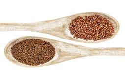 Σιτάρι Kaniwa και quinoa στοκ εικόνες με δικαίωμα ελεύθερης χρήσης