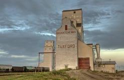 σιτάρι Saskatchewan ανελκυστήρων Στοκ Εικόνες