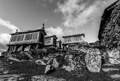 Σιτοβολώνες σε Lindoso - την Πορτογαλία Στοκ Εικόνες
