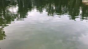 Σιωπηλή έκταση της λίμνης φιλμ μικρού μήκους