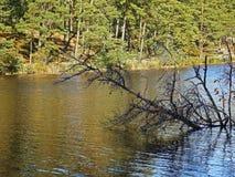 Σιωπηλός ποταμός φθινοπώρου Στοκ φωτογραφία με δικαίωμα ελεύθερης χρήσης