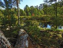 Σιωπηλός ποταμός φθινοπώρου Στοκ Εικόνες