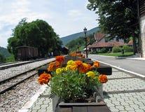 Σιδηροδρομικός σταθμός βουνά στοκ εικόνες με δικαίωμα ελεύθερης χρήσης
