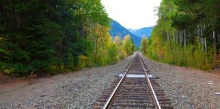 Σιδηρόδρομος με τα mountaints στον ορίζοντα κράτος Ουάσιγκτον Στοκ Φωτογραφίες