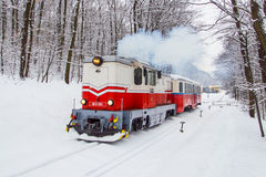 Σιδηρόδρομος παιδιών - Βουδαπέστη Στοκ Εικόνα