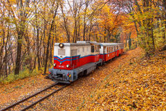 Σιδηρόδρομος παιδιών - Βουδαπέστη Στοκ φωτογραφία με δικαίωμα ελεύθερης χρήσης