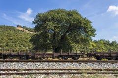 Σιδηρόδρομος τραίνων στη φύση Στοκ εικόνα με δικαίωμα ελεύθερης χρήσης