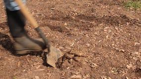 Σκάβοντας τρύπα στο ρύπο απόθεμα βίντεο
