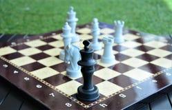 Σκάκι εν πλω στοκ εικόνες