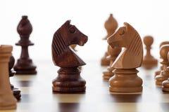 Σκάκι ιπποτών Στοκ φωτογραφία με δικαίωμα ελεύθερης χρήσης