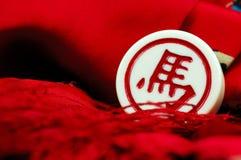 σκάκι κινέζικα Στοκ εικόνα με δικαίωμα ελεύθερης χρήσης