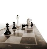 σκάκι μάχης Στοκ Εικόνες