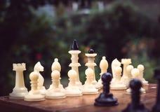 Σκάκι μεγάλο υπαίθρια Στοκ Εικόνες