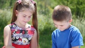 Σκάκι παιχνιδιού παιδιών στη φύση απόθεμα βίντεο