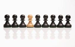 σκάκι περίεργο έξω Στοκ Εικόνες