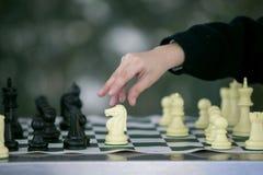Σκάκι που θέτεται σε κίνηση Στοκ Φωτογραφία