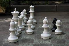 Σκάκι στο έδαφος Στοκ Εικόνες