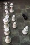 Σκάκι στο έδαφος Στοκ Εικόνα