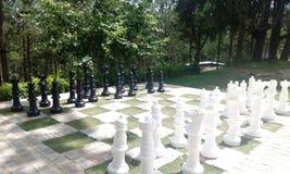 Σκάκι της ζωής Στοκ φωτογραφία με δικαίωμα ελεύθερης χρήσης