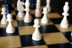 σκάκι χαρτονιών στοκ φωτογραφίες