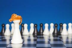 Σκάκι ως πολιτική 13 Στοκ Φωτογραφία