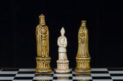 Σκάκι 14 Στοκ Εικόνες