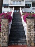 σκάλα εισόδων Στοκ εικόνα με δικαίωμα ελεύθερης χρήσης