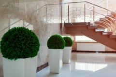 Σκάλα και εσωτερικό στο σύγχρονο κτήριο εμπορικών κέντρων Έξοδος εκκένωσης έκτακτης ανάγκης Σκαλοπάτια στο εμπορικό κέντρο στοκ εικόνες