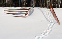 σκάλα πάγκων Στοκ εικόνα με δικαίωμα ελεύθερης χρήσης