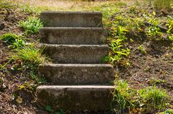 Σκάλα πέντε βημάτων Στοκ εικόνες με δικαίωμα ελεύθερης χρήσης
