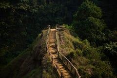 Σκάλα στη γέφυρα παρατήρησης στοκ εικόνα με δικαίωμα ελεύθερης χρήσης