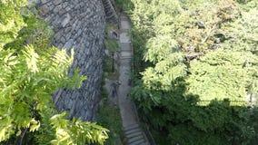 Σκάλα στο πάρκο πόλεων της Νέας Υόρκης φιλμ μικρού μήκους