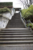 Σκάλα τσιμέντου στο μουσείο της ανθρωπολογίας Στοκ Φωτογραφίες