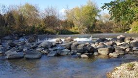 Σκάλα ψαριών σολομών στον ποταμό στη Βόρεια Αμερική/τον Καναδά στοκ εικόνες