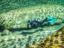 Σκάφανδρο Β ποταμών Στοκ Εικόνες