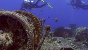 Σκάφανδρο που βουτά κοντά στη βυθισμένη υποβρύχια Ερυθρά Θάλασσα σκαφών φιλμ μικρού μήκους