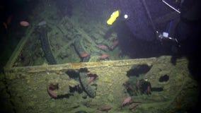 Σκάφανδρο που βουτά κοντά στο σκουριασμένο σκάφος φορτίου ναυαγίου υποβρύχιο απόθεμα βίντεο