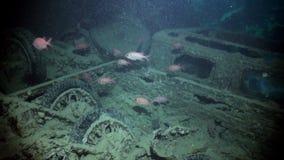 Σκάφανδρο που βουτά κοντά στο σκουριασμένο σκάφος φορτίου ναυαγίου υποβρύχιο φιλμ μικρού μήκους