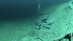 Σκάφανδρο που βουτά στη λίμνη υποβρύχιο Fernpass βουνών Fernsteinsee σε Nassereith φιλμ μικρού μήκους