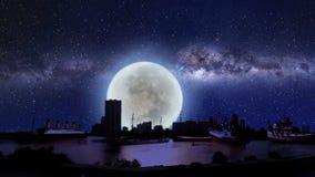 Σκάφη από όλο το είδος στην προκυμαία τη νύχτα διανυσματική απεικόνιση