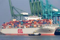 Σκάφος εμπορευματοκιβωτίων Αμβέρσα Στοκ φωτογραφίες με δικαίωμα ελεύθερης χρήσης