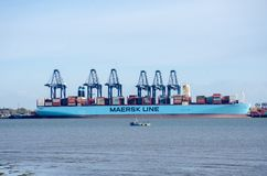 Σκάφος εμπορευματοκιβωτίων γραμμών Maersk στο λιμένα σε Flexistowe με τους γερανούς Στοκ Εικόνες