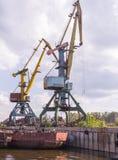 Σκάφος εμπορευματοκιβωτίων στην εξαγωγή και την επιχείρηση και τις διοικητικές μέριμνες εισαγωγών Στέλνοντας φορτίο στο λιμάνι απ Στοκ Φωτογραφίες