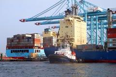 Σκάφος εμπορευματοκιβωτίων Maersk Ντένβερ που λειτουργεί με τους γερανούς εμπορευματοκιβωτίων Στοκ εικόνες με δικαίωμα ελεύθερης χρήσης