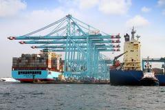 Σκάφος εμπορευματοκιβωτίων Maersk Ντένβερ που λειτουργεί με τους γερανούς εμπορευματοκιβωτίων Στοκ Εικόνα
