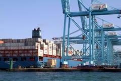Σκάφος εμπορευματοκιβωτίων Maersk Sarat που λειτουργεί με τους γερανούς εμπορευματοκιβωτίων Στοκ Εικόνα